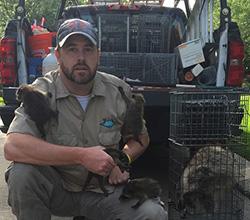 Animal Removal Wildlife Control Charleston West Virginia