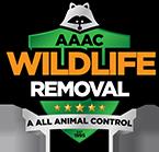 Charleston Wildlife Removal