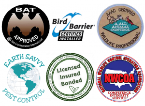 certification banner pic