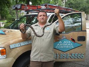 snakecontrol
