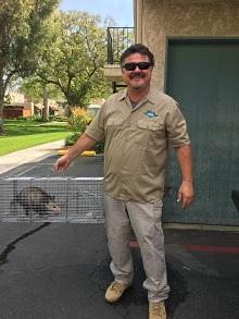 opossum removal san bernardino
