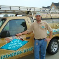 Rock Hill Animal Removal